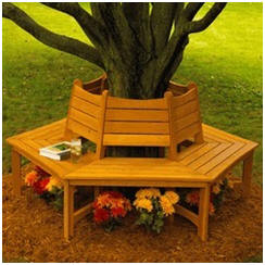 DIY Wooden Tree Bench Building Plans from WoodStore.com